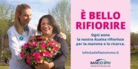 """""""E' BELLO RIFIORIRE"""", SABATO E DOMENICA ANCHE A TERAMO L'INIZIATIVA DELL'AIRC"""